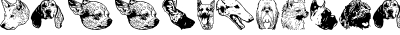 DoggyPrint AOE
