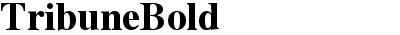 TribuneBold