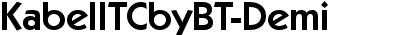 KabelITCbyBT-Demi
