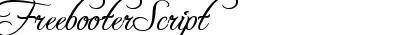 FreebooterScript