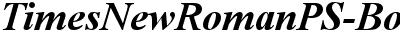 Times New Roman Bold Italic