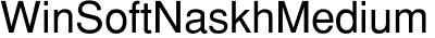 WinSoft Naskh Medium