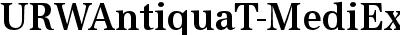 URWAntiquaT-MediExtrNarr