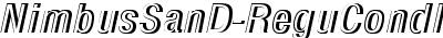 NimbusSanD-ReguCondItalRe...