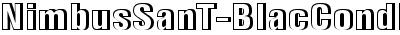 NimbusSanT-BlacCondRe1